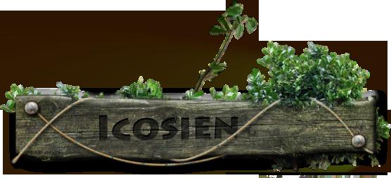 Titre du jeu : Icosien